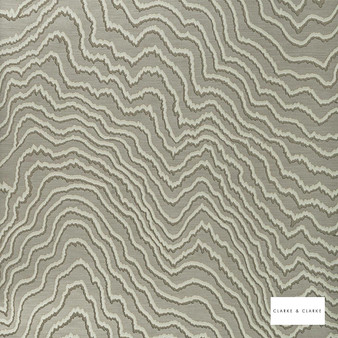 Clarke & Clarke - Fiji Taupe Wp  | Wallpaper, Wallcovering - Tan, Taupe, Abstract, Vermicular, Print