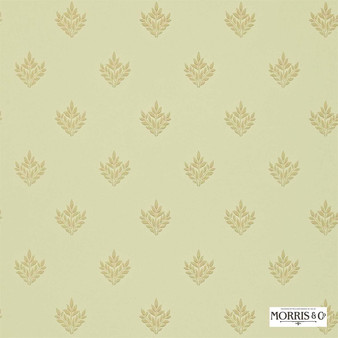 Morris and Co - Pearwood DMORPE108  | Wallpaper, Wallcovering - Fire Retardant, Gold, Yellow, Floral, Garden, Botantical, Traditional, Craftsman