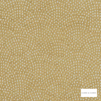 Clarke & Clarke - Nebula Antique  | Curtain & Upholstery fabric - Gold, Yellow, Geometric, Circles, Dots, Spots, Pattern, Scale