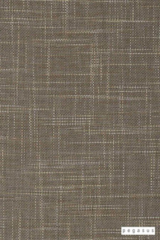 Pegasus Rhodes - Driftwood  | Upholstery Fabric - Brown, Dry Clean, Plain, Texture, Standard Width