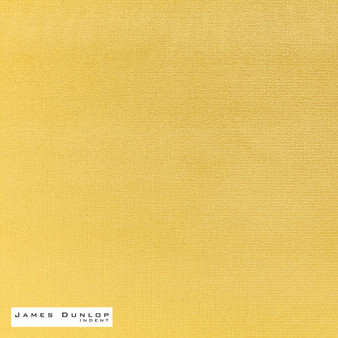 James Dunlop Indent - Velluti - 435  | Curtain & Upholstery fabric - Gold,  Yellow, Plain, Fibre Blends, Domestic Use, Dry Clean, Standard Width
