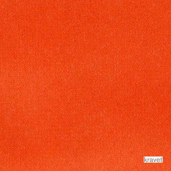 Kravet - Velvet Treat - Orange  | Upholstery Fabric - Plain, Eclectic, Fibre Blends, Velvet/Faux Velvet, Standard Width