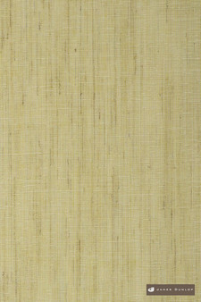 James Dunlop Antipodes - Fern  | Curtain Sheer Fabric - Washable, Gold, Yellow, Wide-Width, Dry Clean, Plain, Strie, Fibre Blend, Strie
