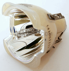 9281 317 05390 Lamp With Philips Bulb For Philips Projector