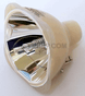 9281 288 05390 Lamp With Philips Bulb For Philips Projector