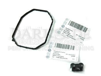 VE Pump Temperature Sensor and Seal