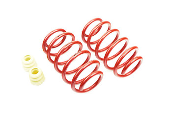 Eibach 60mm Front Lowering Springs for VW Caddy MK3 / MK4