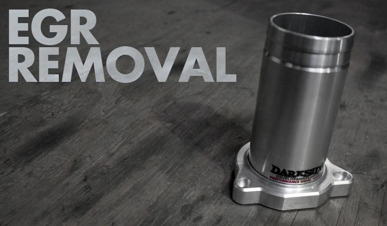 EGR Removal / Delete