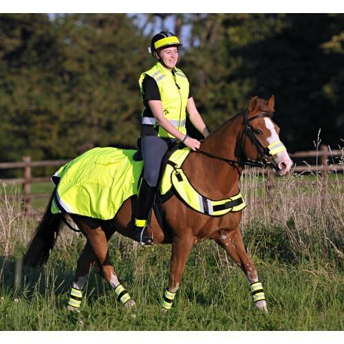 Equisafety Equisafety High Visibility Exercise Sheets