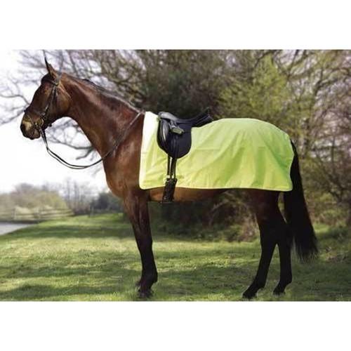 Rhinegold Waterproof Exercise Sheets - Yellow RG