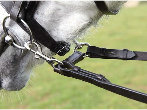 Frome Saddlery Dragonfly Rein Attachments - Encourage Softness