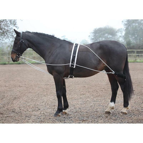 Shires Shires Lunging Aid