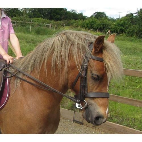 Equi Ami EquiAmi Grass Reins for Ponies