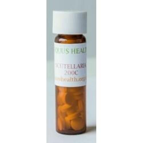 Equus Health Equus Health Scutellaria Homeopathic Calmer