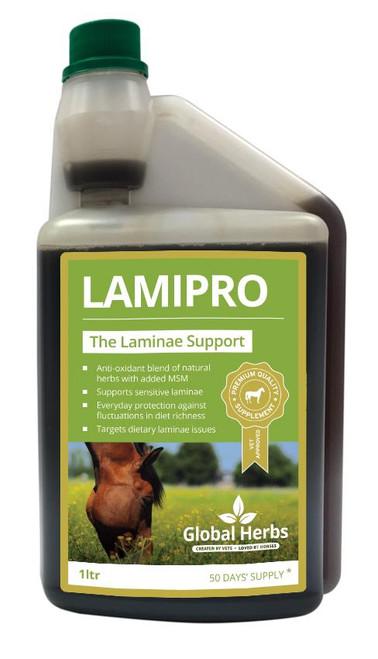 Global Herbs Global Herbs LamiPro Liquid - All Sizes