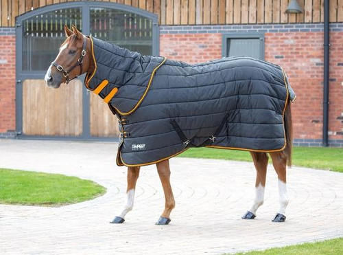 Shires Shires Tempest 300g Stable Rug and Neck Set - Heavyweight