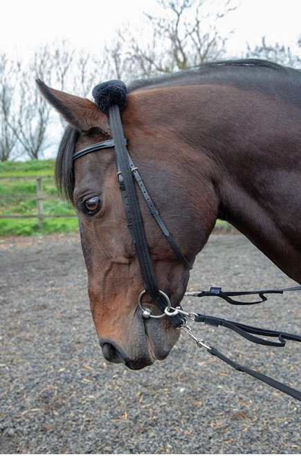 Shires Shires Lunging Adapter