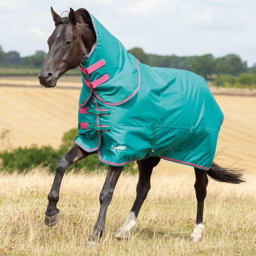 Shires Shires Tempest 100g Turnout Rugs with Detachable Necks