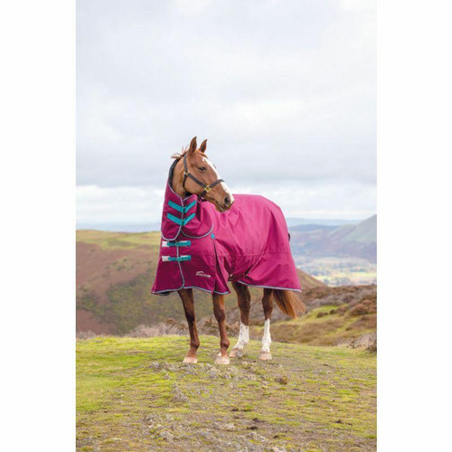 Shires Shires Highlander 300g Combo Turnout Rugs