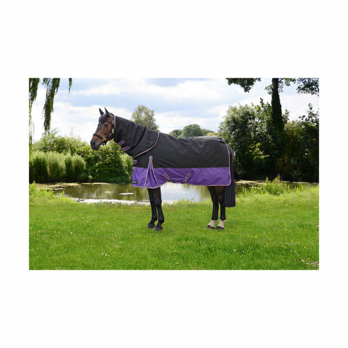 Hy Hy StormX 200g Turnout Rug and Detachable Neck - Purple