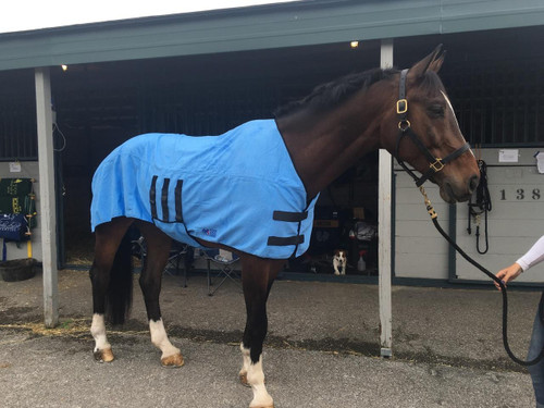 Shires Equi Cool Down Deluxe Equine Body Wrap - One Size