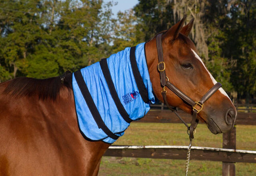 Shires Equi Cool Down Equine Neck Wrap - One Size