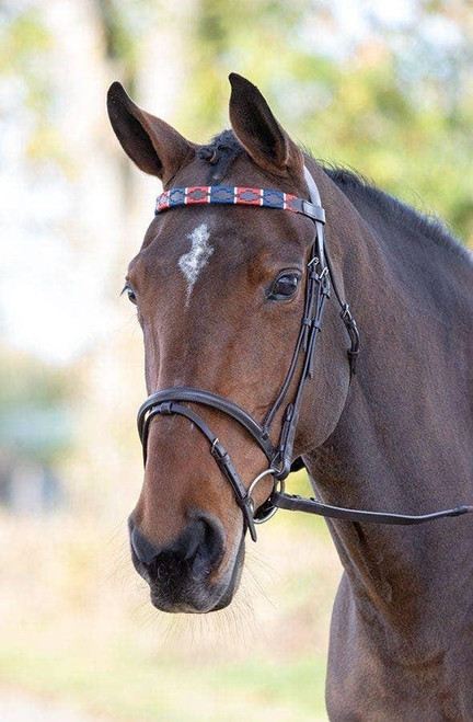 Shires Shires Blenheim Polo Browbands - All Colours