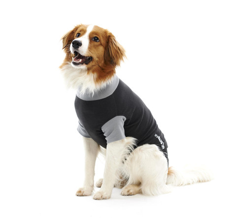 Buster and Kruuse Buster Body Suit for Dogs