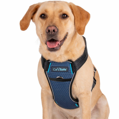 Company of Animals Carsafe Crash Tested Dog Travel Harness - Black
