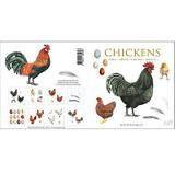 Chickens Danish Art Notecards