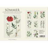 Sommer Danish Art Notecards