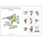 Havens Fugle Danish Art Notecards