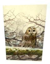 Owls Notecards