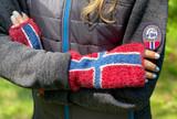 Norwegian Flag Fingerless Wristlet