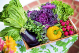 Best Ways to Naturally Boost Your Immune System