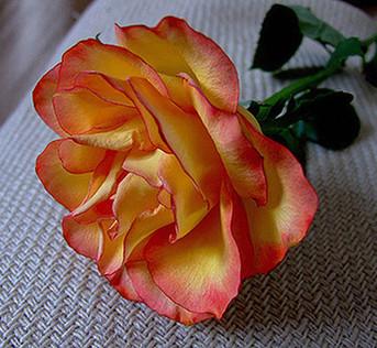 Incense - Bethlehem Rose, 1oz