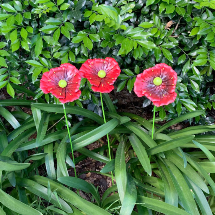 Poppies set of three single stem 44cm