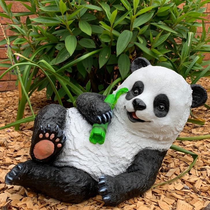 Panda Lying Down
