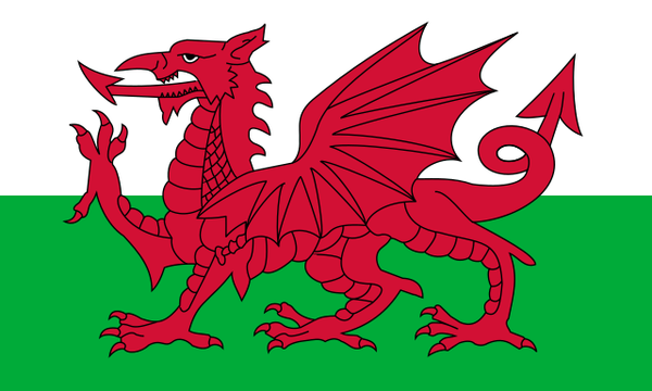 Y Ddraig Goch as depicted on the Flag of Wales