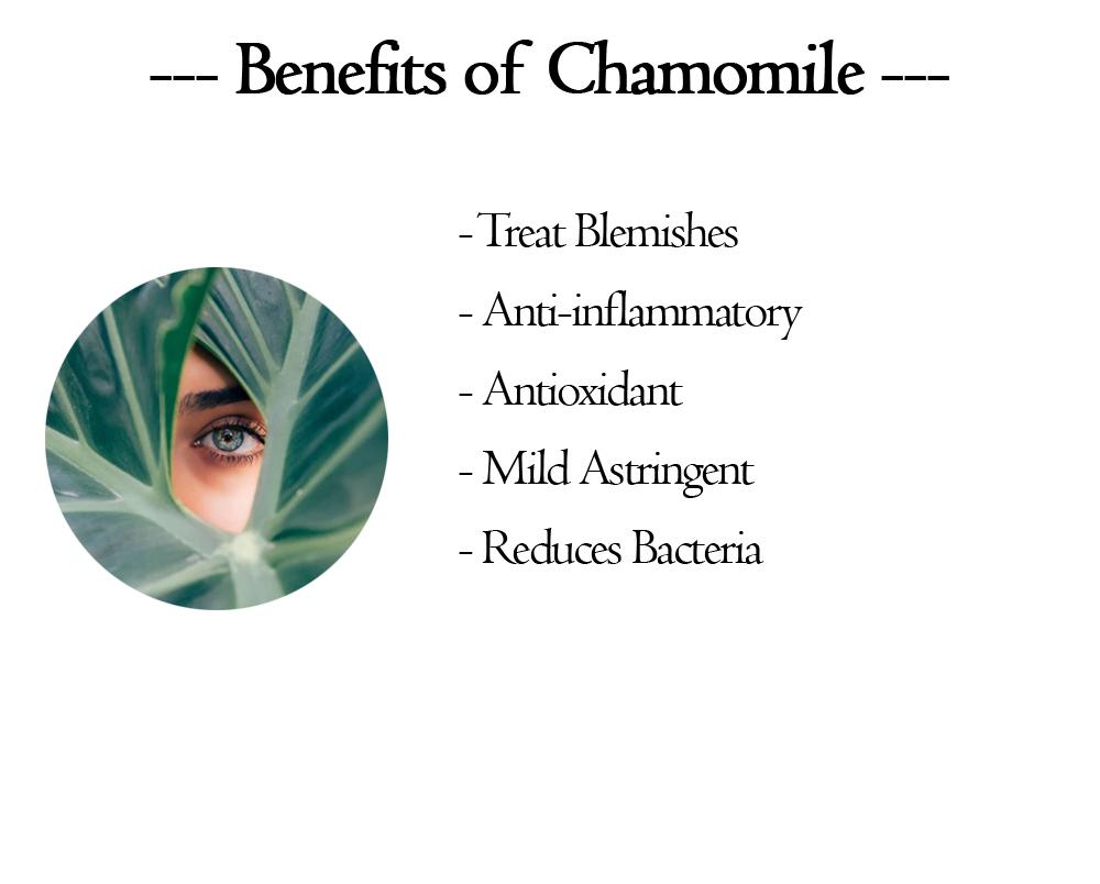 benefits-of-chamomile1.jpg