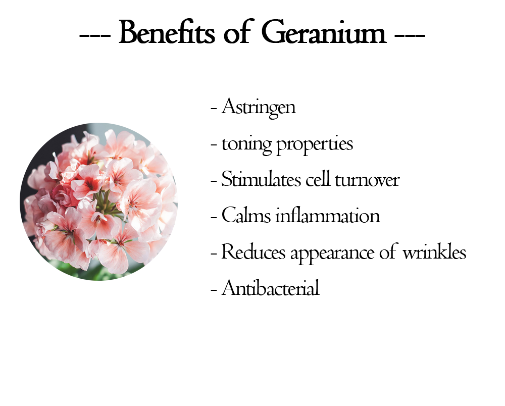 benefits-of-geranium.png