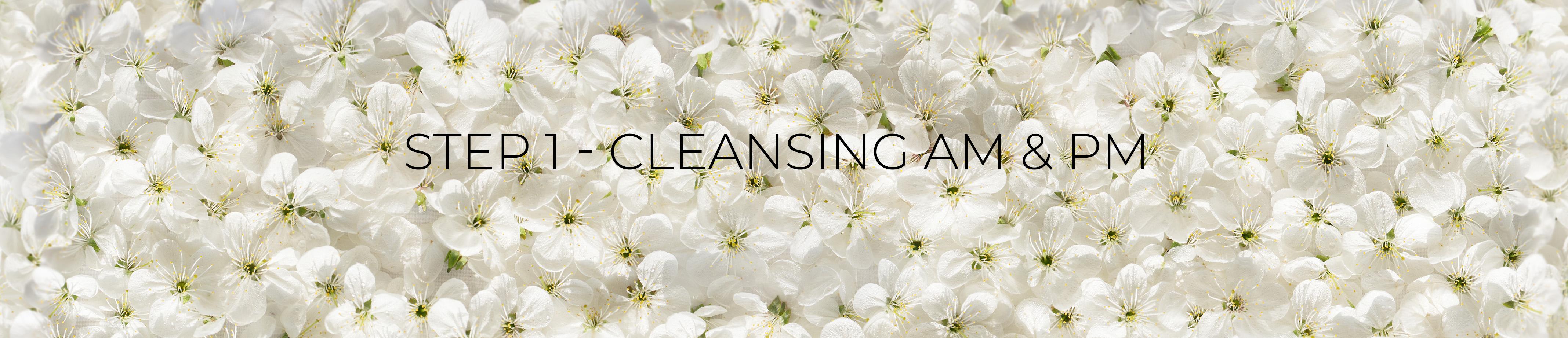 cleansing-new-header.jpg
