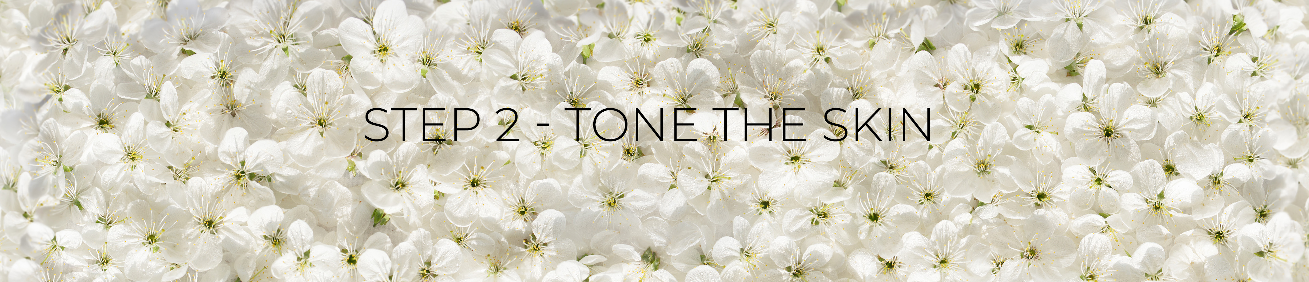 tone-banner.jpg
