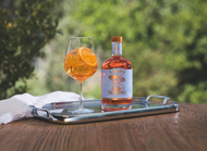So you think you know an Italian Spritz?