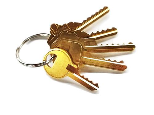 Bump Key (HCBK1)