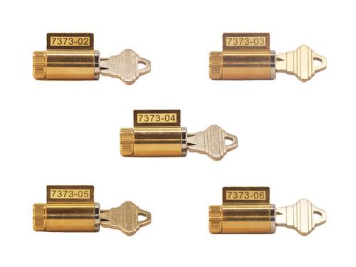 Progressive Lock Pick Set (PLPS)