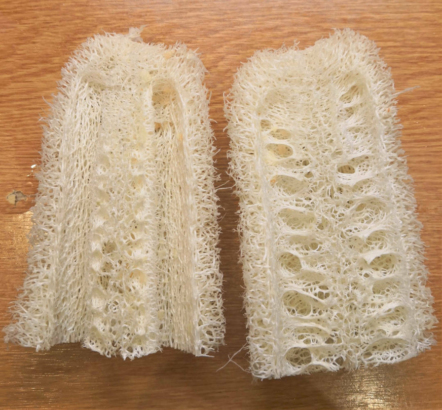 Loofah Sponge for body or cleaning