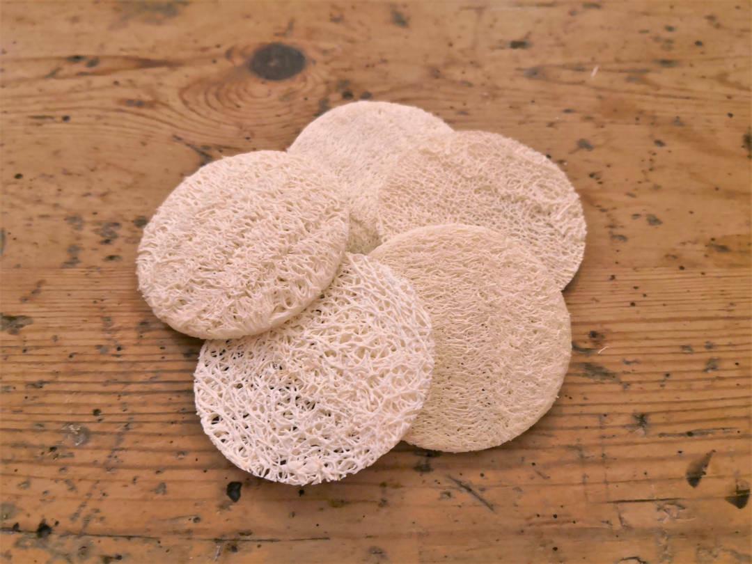 Exfoliating Loofah face discs
