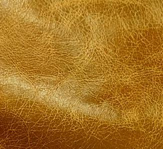 Leather Butterscotch