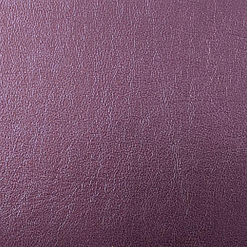 swvioletpurple-500500px.jpg